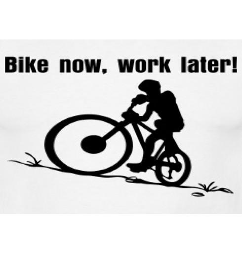 Guide: 5 ting du skal bruge når du kører på Mountain-bike