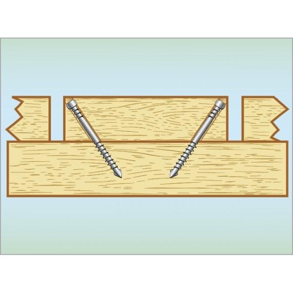 f0e72bcba HDS terrasseskrue Essve 4,8x60 rustfrit stål A4 - 250 stk